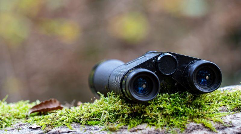 Quels outils pour une partie de chasse réussie ?